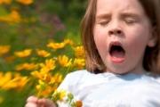 Острая аллергия: первая помощь