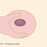 deti-novonorog-5-kitov-4