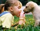 Глисты у ребенка — симптомы